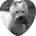 Médaillon porcelaine coeur 15 cm noir et blanc