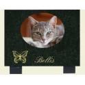 Plaque en granit noir avec médaillon photo chat 18*13